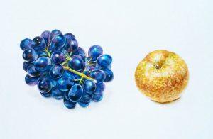 ブドウと梨1